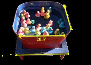 duckpond21-300x215